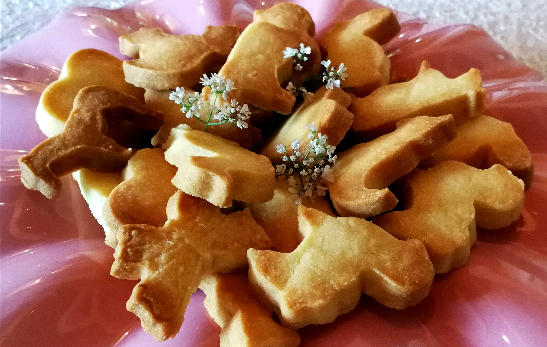 Shortbreads animaux